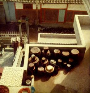 Sun-Fermenting Kimchi