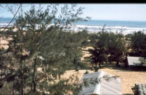 Vietnam War The Days Forward