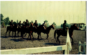 Army Race Horse